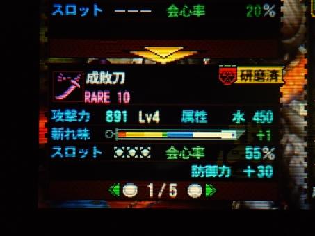 DSC00813_R.jpg