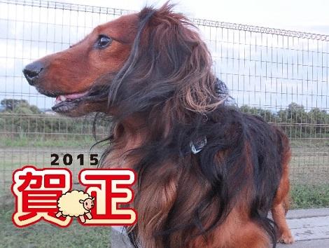 2015小鉄2