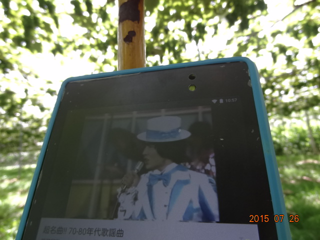 DSC00533_2015072623011045b.jpg