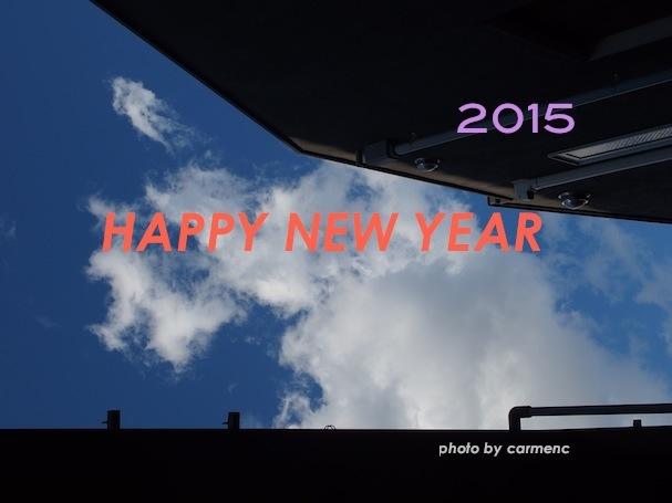 PC130277_2015010115535251d.jpg