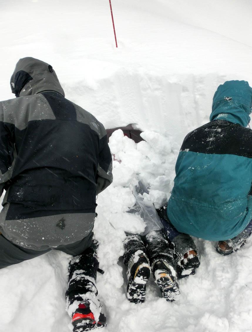 関東ブロック雪崩(29)