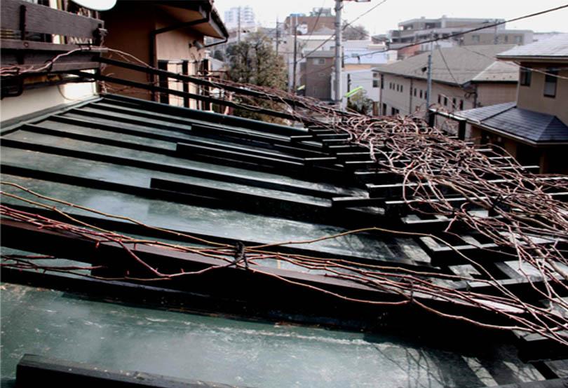 屋根の上のFジュランビル(6)