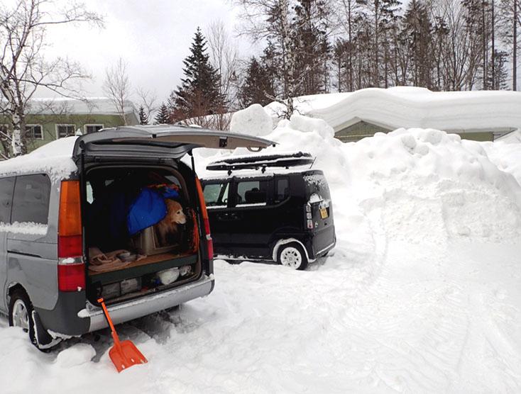 2015年 全国雪崩 (13)