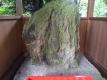大縣神社2姫宮