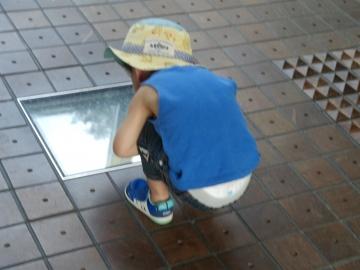 床の展示物を覗き見る息子。