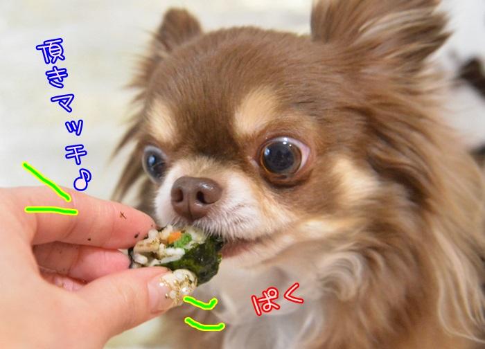 DSC_9017_20150203142759197.jpg