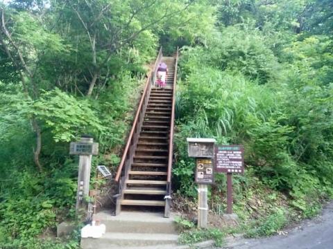 この階段が登山口
