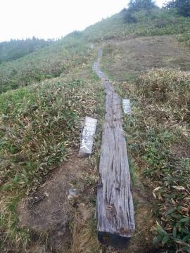 大津岐峠の分岐(御池方面を示す)