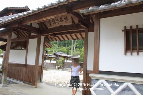 himawari-0713-5378.jpg
