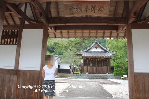 himawari-0713-5383.jpg