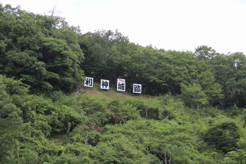 himawari-0713-5397.jpg
