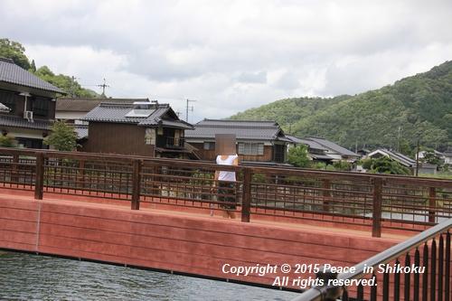 himawari-0713-5400.jpg