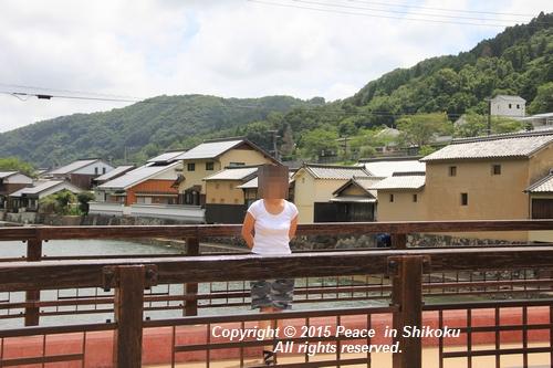 himawari-0713-5406.jpg