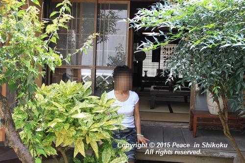 himawari-0713-5412.jpg