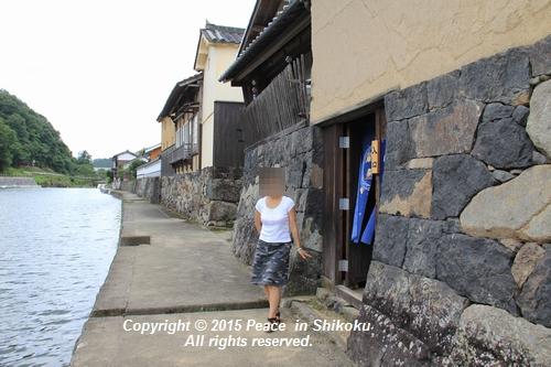himawari-0713-5421.jpg
