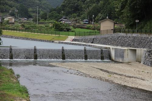 himawari-0713-5436.jpg