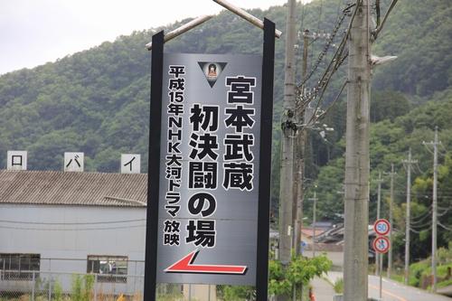 himawari-0713-5461.jpg