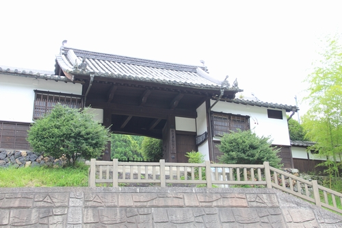 himawari-0713-5463.jpg