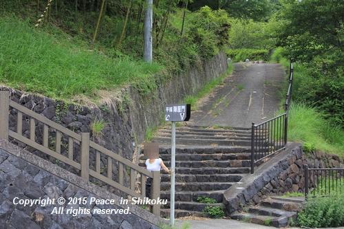 himawari-0713-5465.jpg