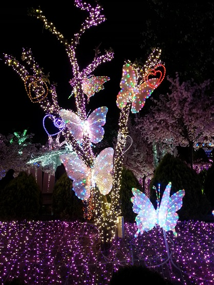 2015-05-10-20-12-44_photo.jpg