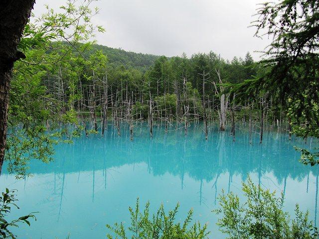 s-青い池7月