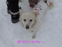 01.12しーちゃん