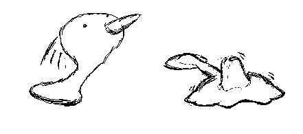 tori bird mochi