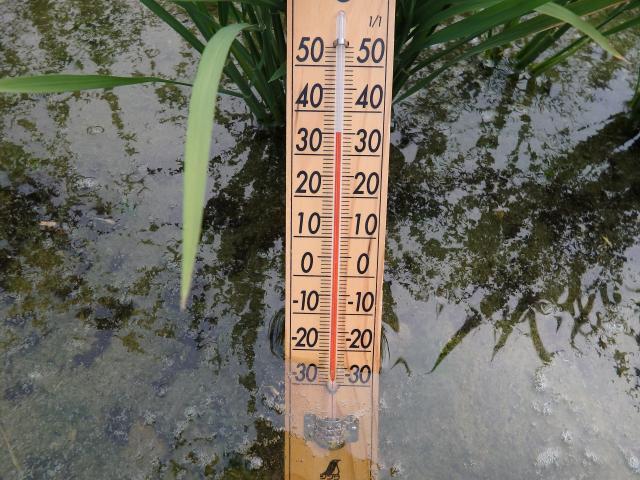 田んぼに張る水は湯たんぽだ!