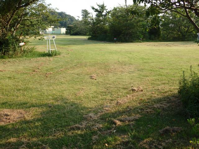 広大な芝生地のようなところがある