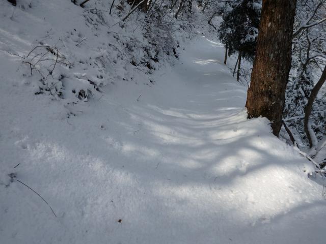 高越山の表参道は、1.2キロの登山道