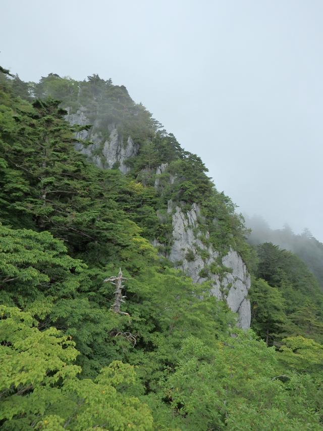地形は急峻で岩峰がある