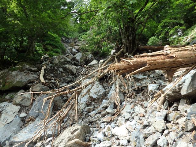 巨石累々、浮石もあり危険