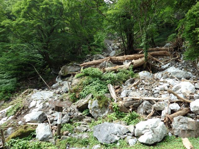 谷に土石流が襲った