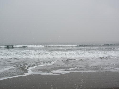 15.02.12.つれづれ2