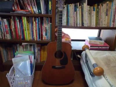 8.9Sヤイリギター2