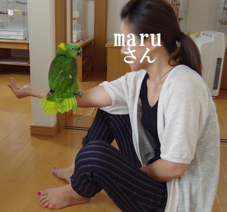 IMGP0286maru.jpg