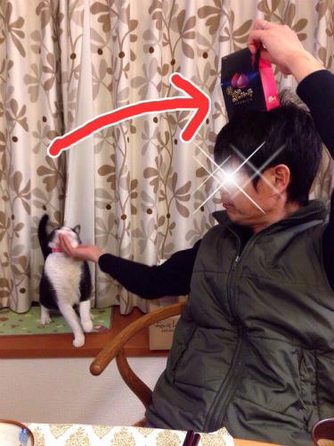 eisanhachi01.jpg