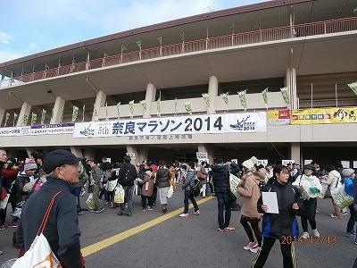 奈良2014-1