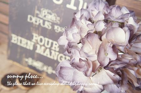 ajisai purple2 blog