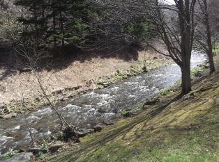 すずやかな川の流れ