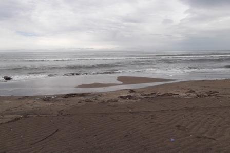 まだ寒々な海