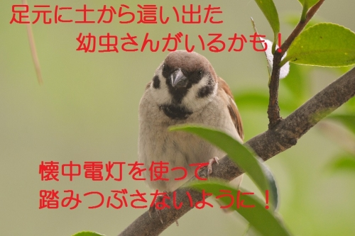 180_20150720172246a86.jpg