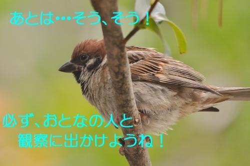 190_20150720172247dc7.jpg