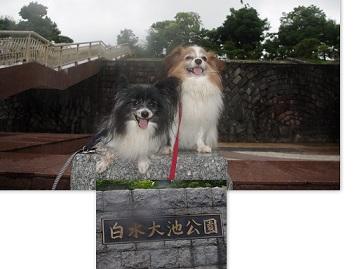 2015-07-14~19 筑紫野にて
