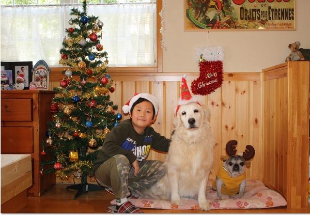 Baidu IME_2014-12-23_15-18-29