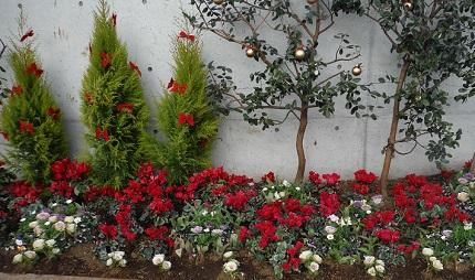 クリスマス201412花壇