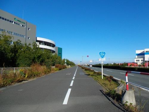 IMGP6360.jpg