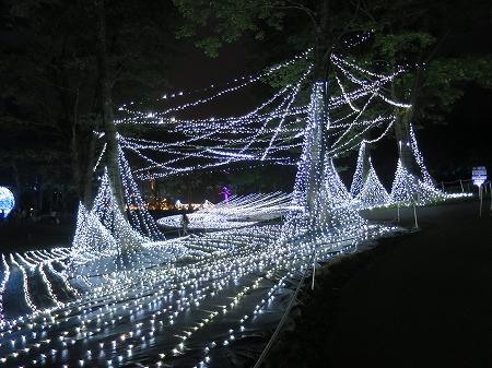 LEDの森