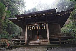 150222八幡宮来宮神社大杉⑥