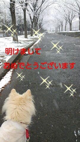 0101b